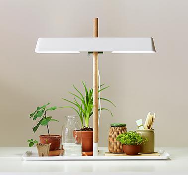 plant_lamp_02_